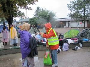 Volonteri Nova Akropola