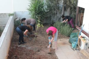 Workshop on gardening (Nicosia, Cyprus)