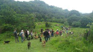 Visita al refugio canino en Territorio de Zagüates (Cartago, Costa Rica)