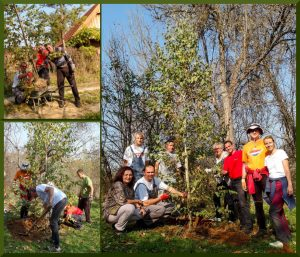 """We took part as volunteering in National Tree-Planting Initiative """"Plant a Tree, don't be a Stump"""" (Zagreb, Croatia)"""
