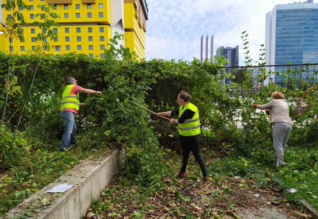 Urban ecology-2